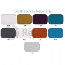 Dirbtinės odos spalva EXCLUSIVE linija