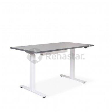 Reguliuojamo aukščio stalas CANUS su ergonomine kėde SALLI MULTIADJUSTER 2